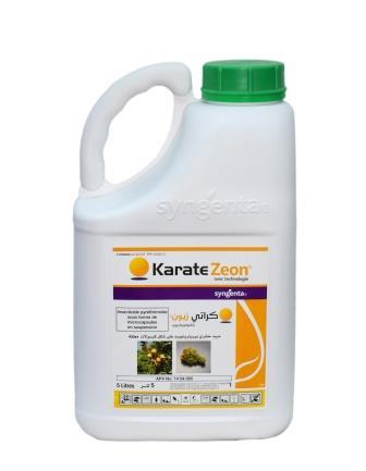 Karaté Zéon